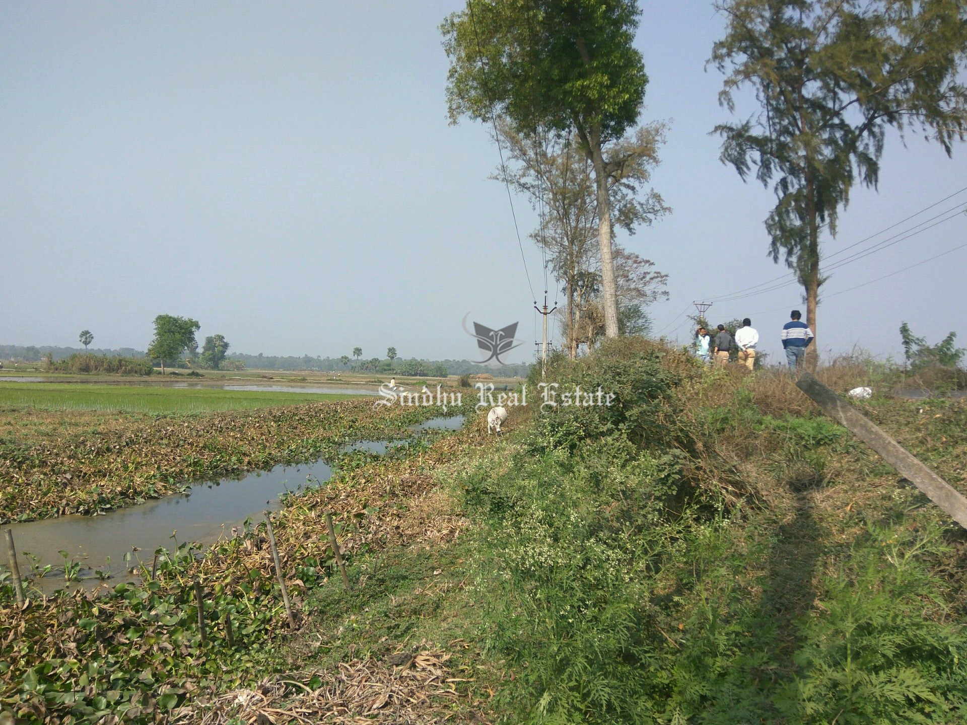 Residential Land Available in West Bengal at a Very Affordable Price