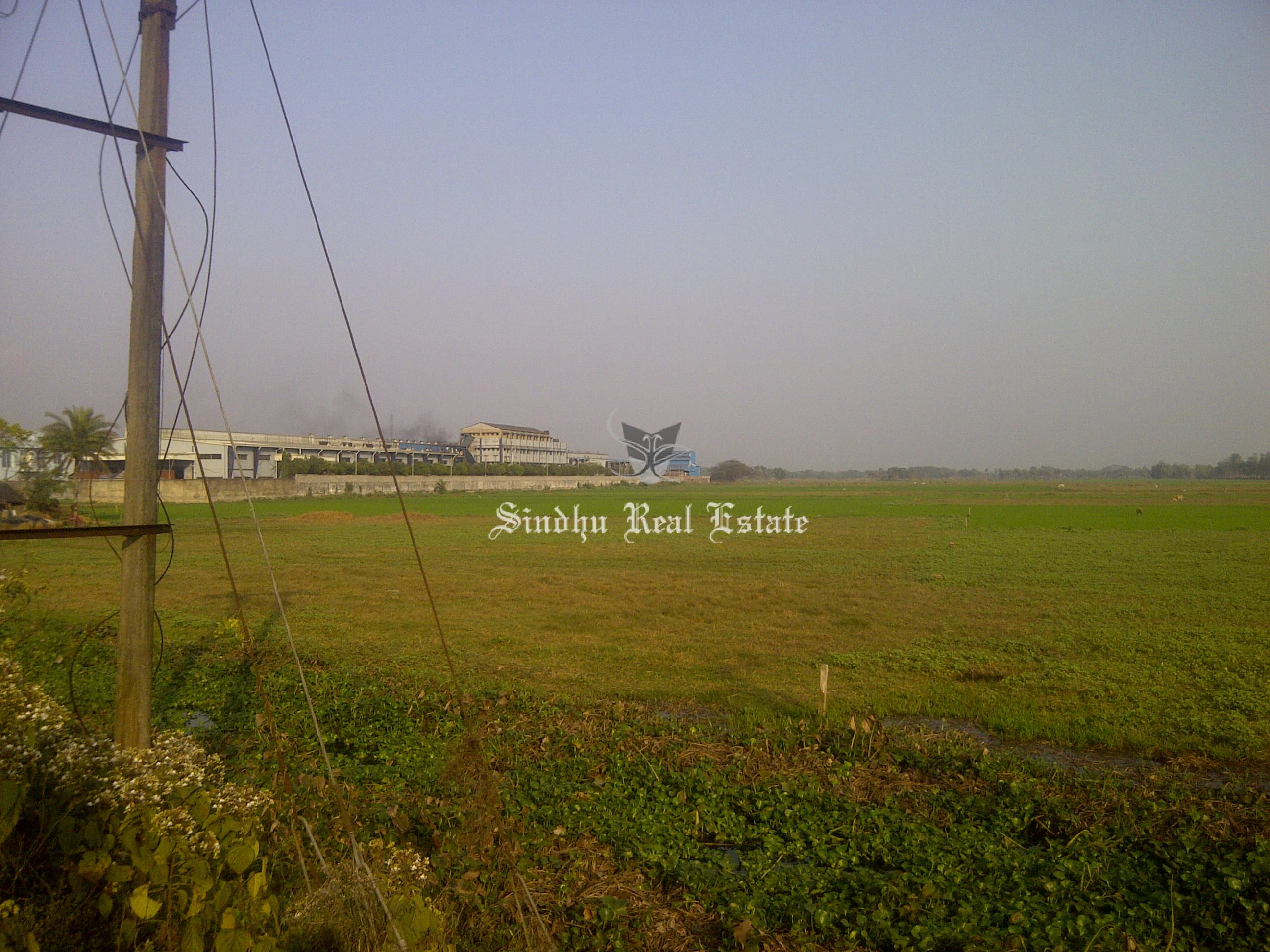wonderfuland affordable commercial land available in Baruipur
