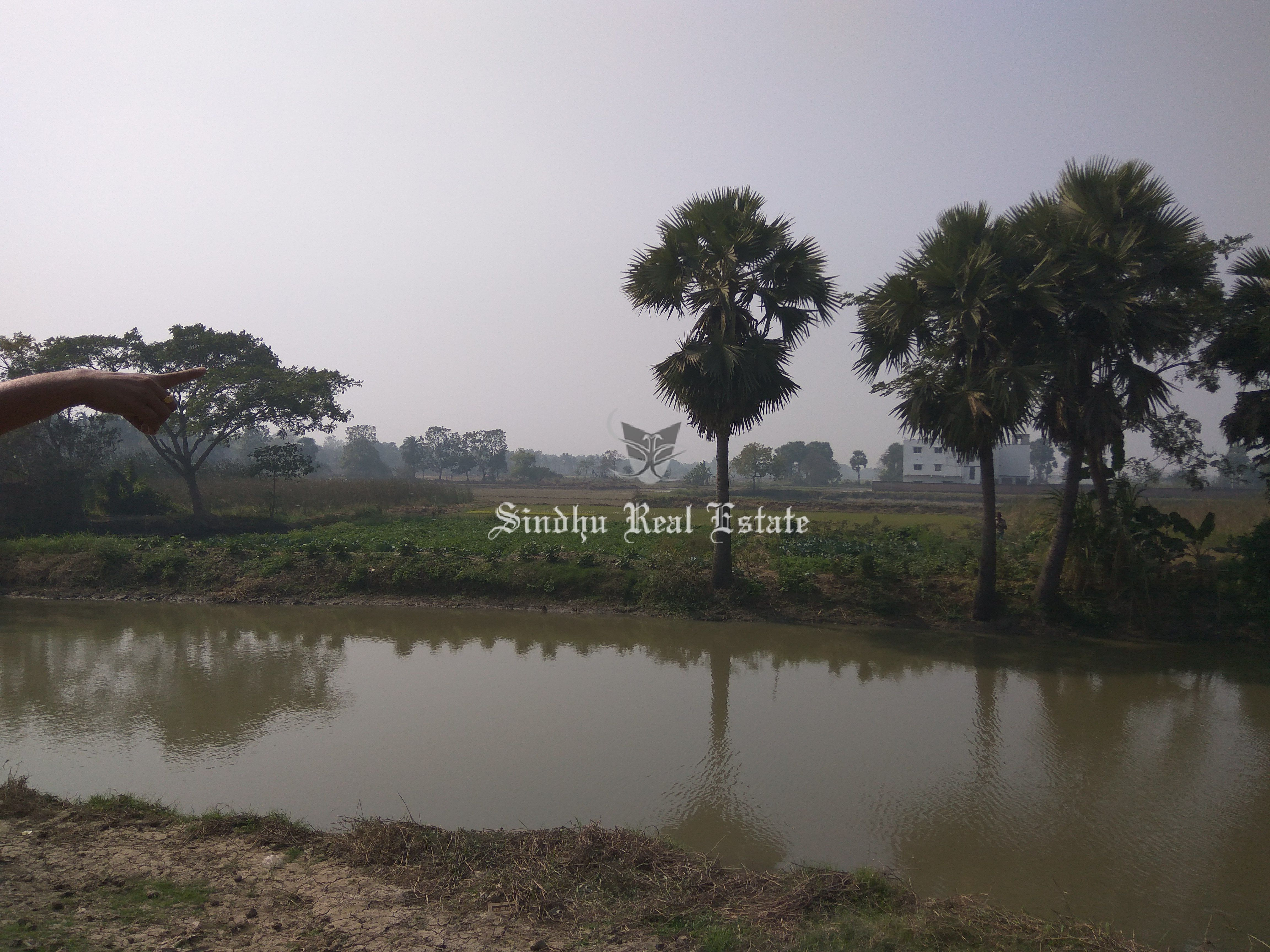 Commercial Land for Salein Baruipur