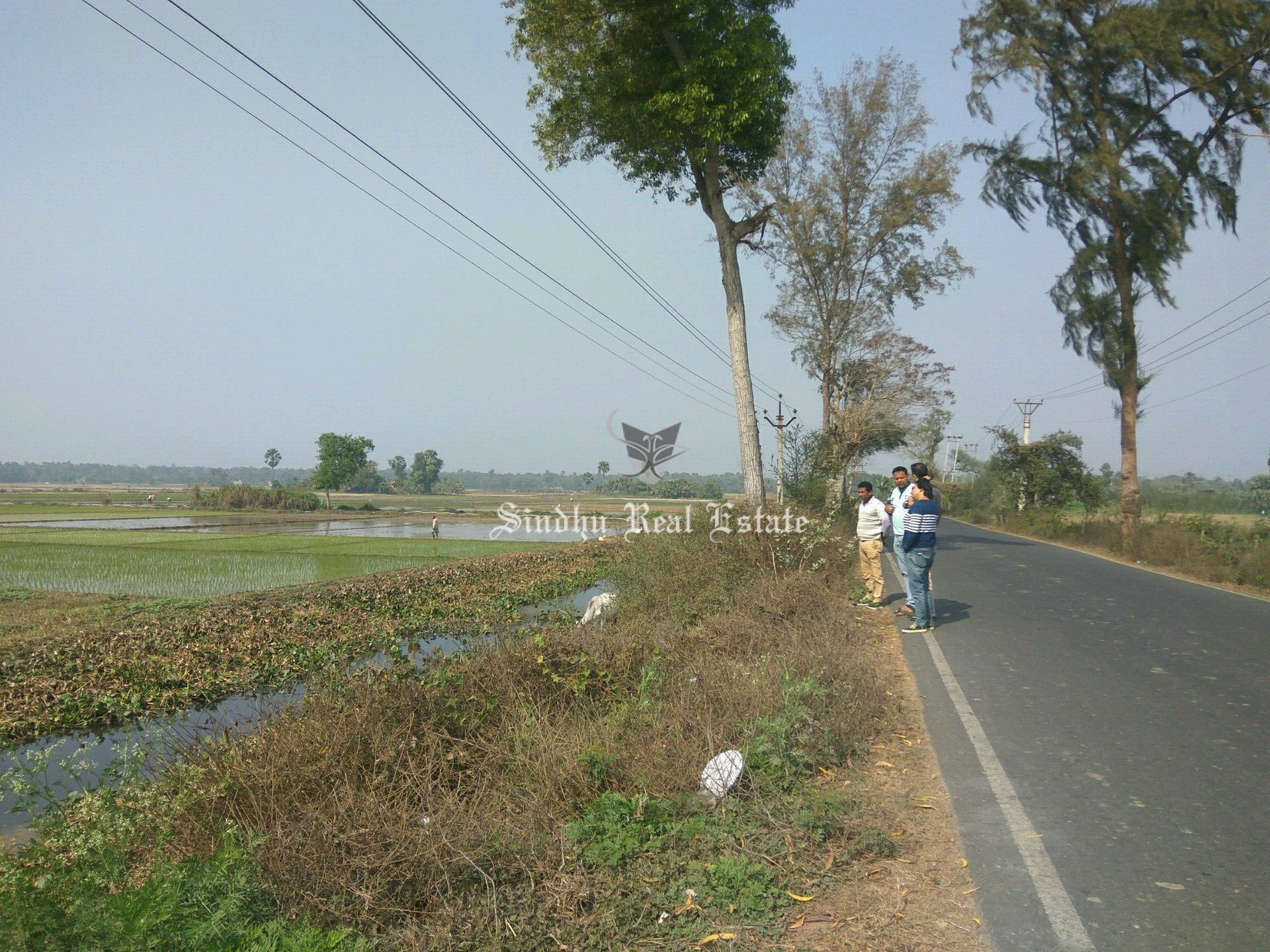 Clean and Best Quality Commercial Land in Sonarpur