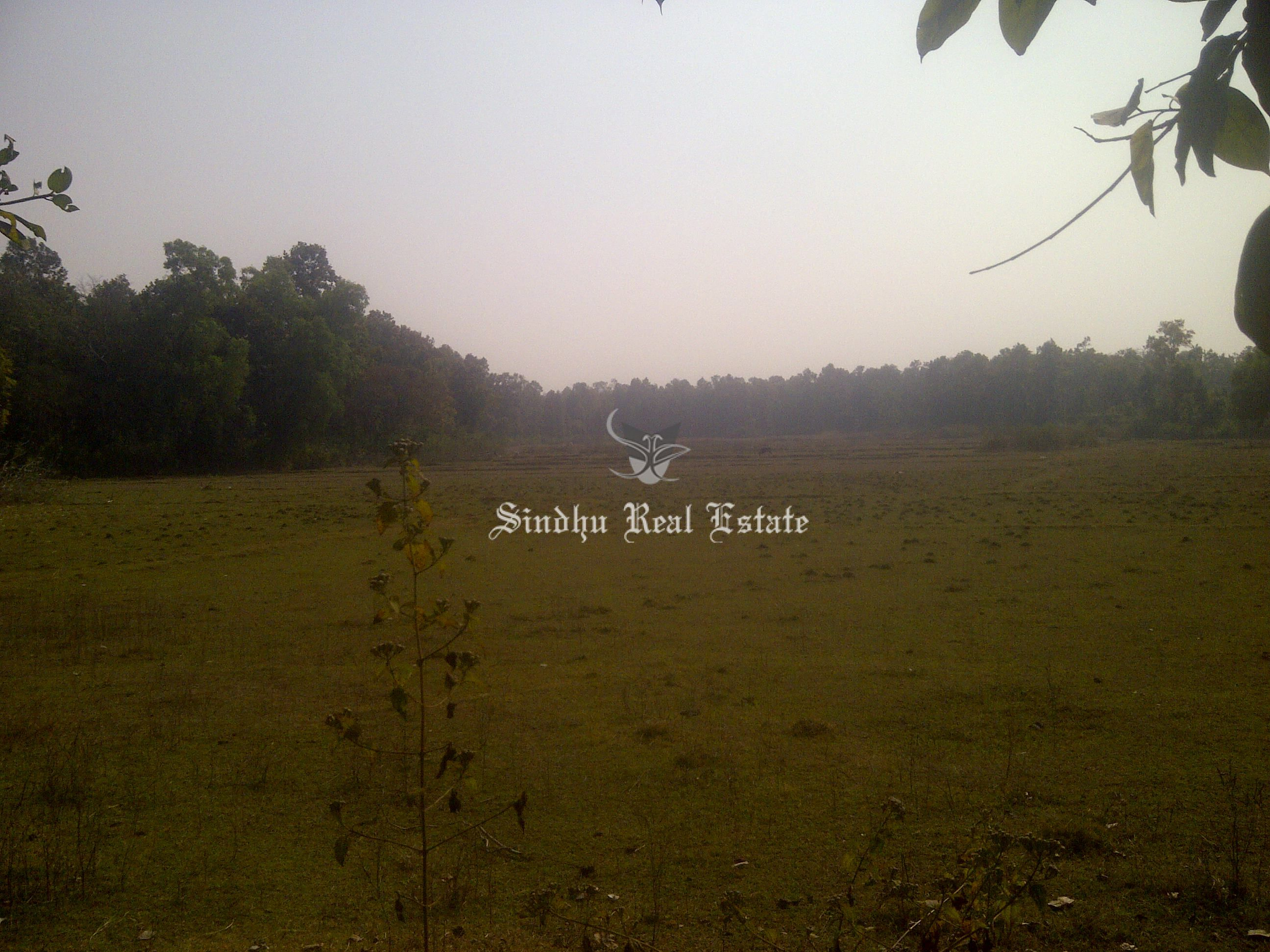 Attractive Commercial Land in Baruipur