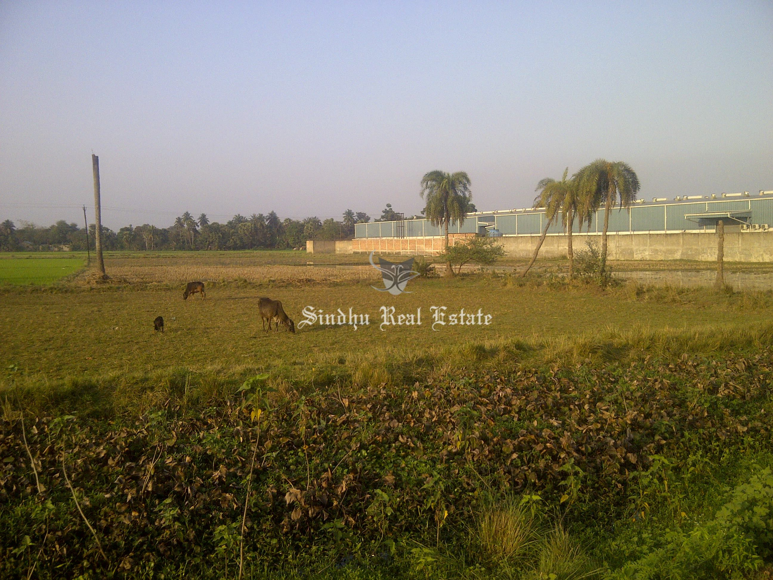 Affordable and Good Quality Commercial Land in Durgapur Expressway