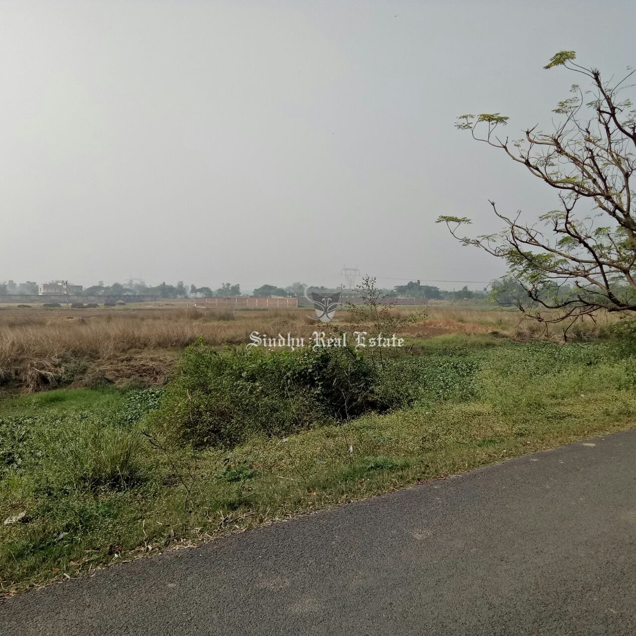 Superb and Best Land in NH 2