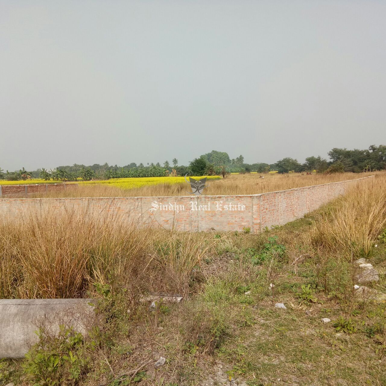 Available Best Land in Howrah With the Necessary Facilities