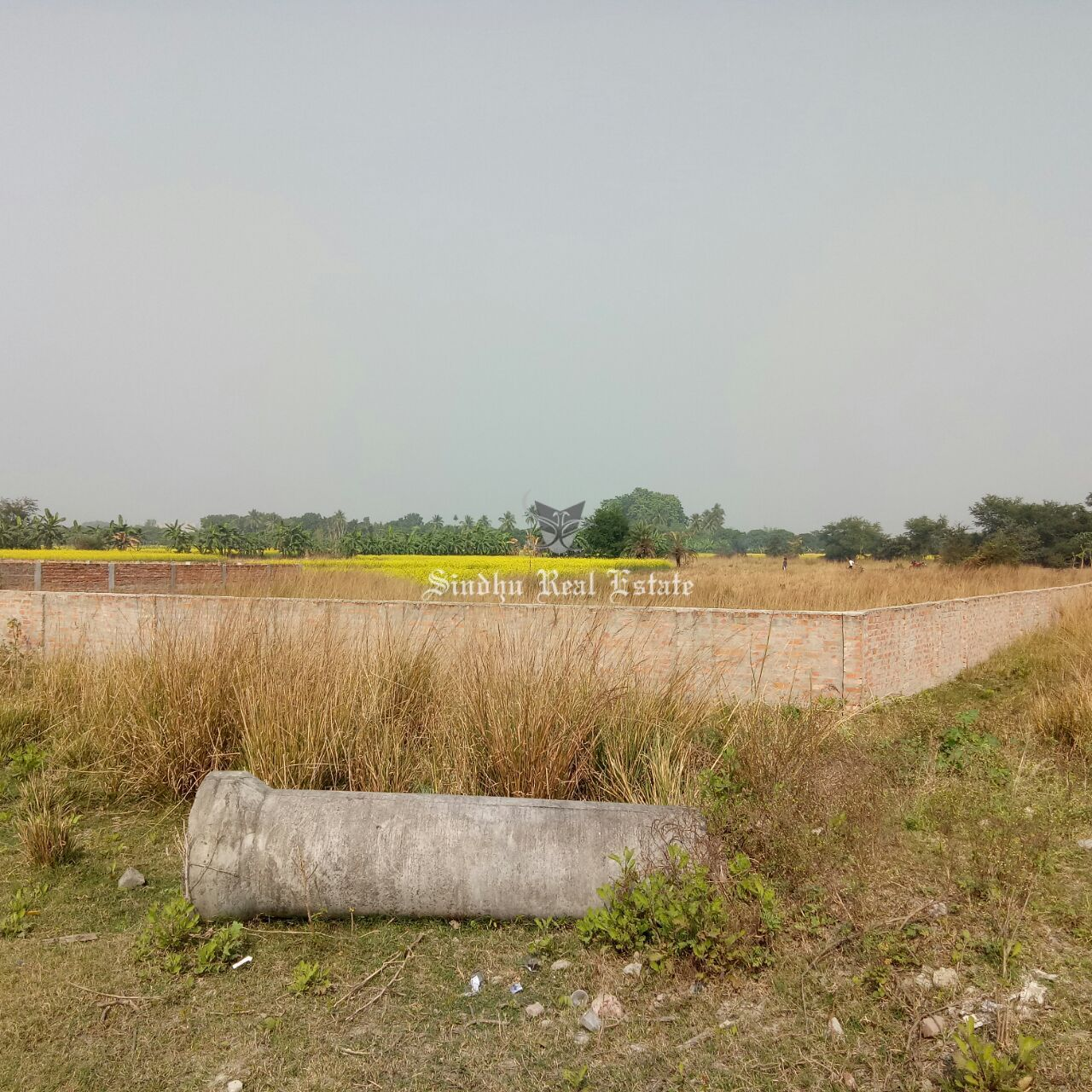 Attractive Residential land in Salt Lake Sector 2 with an affordable range.
