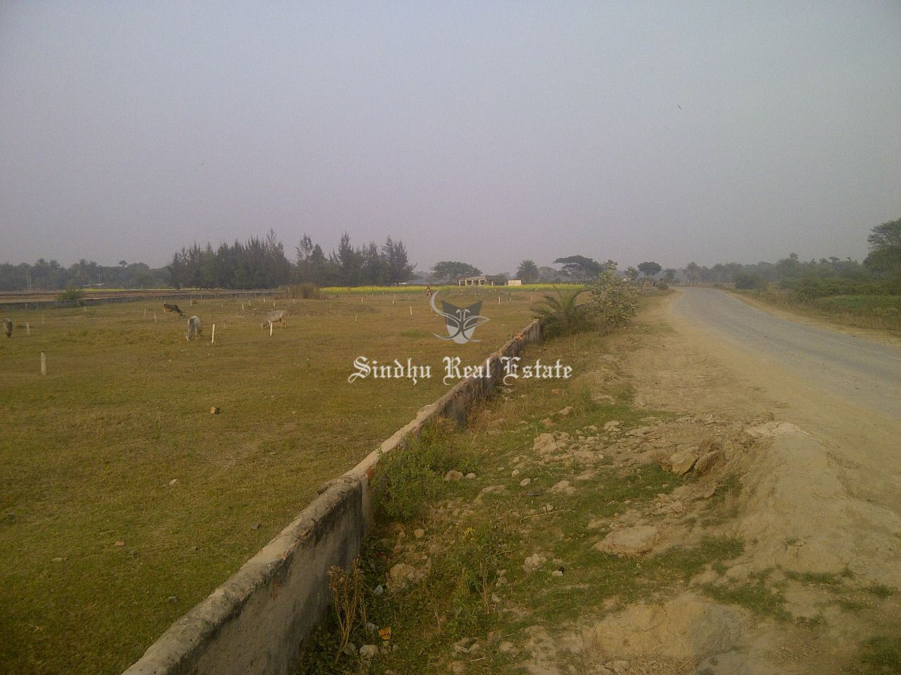 INDUSTRIAL LAND FOR SALE IN NEW TOWN ACTION AREA III
