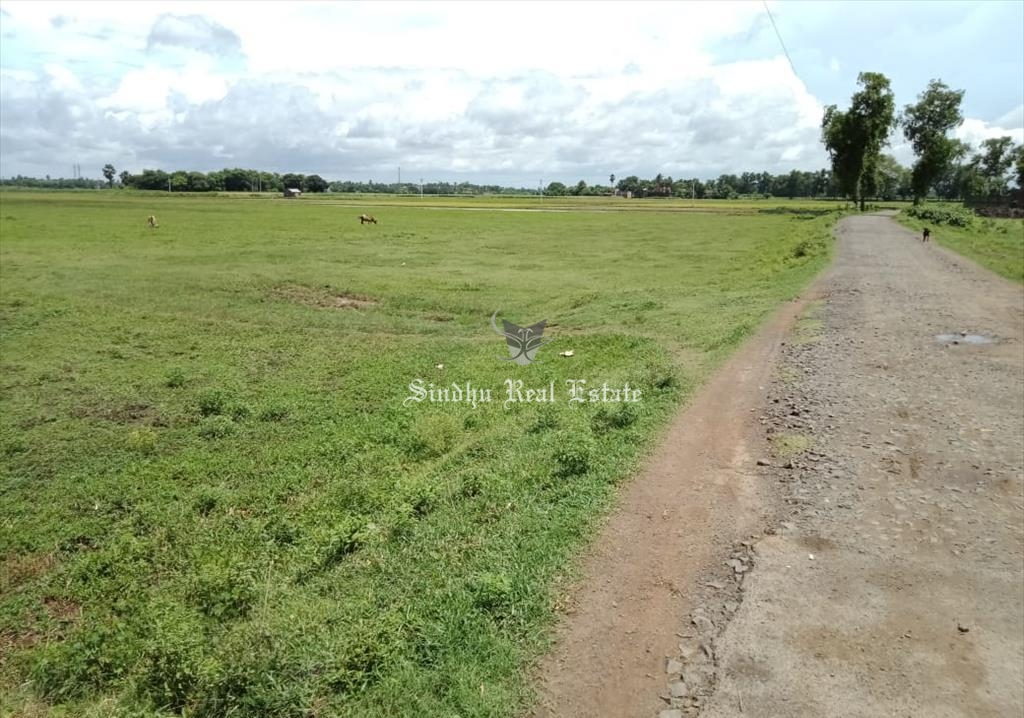 Land is available for sale in Dankuni