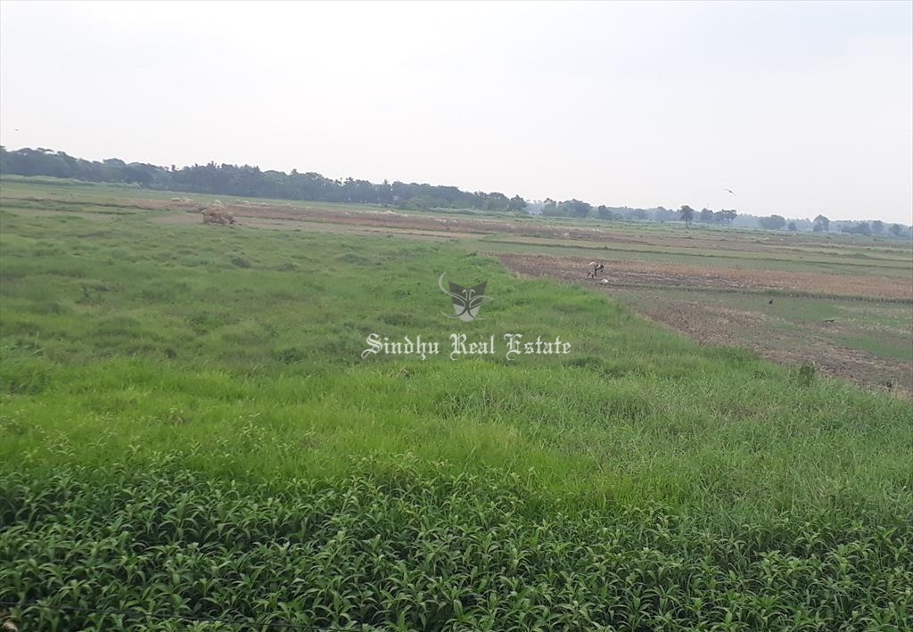 60 Katha land is available for sale in Dankuni