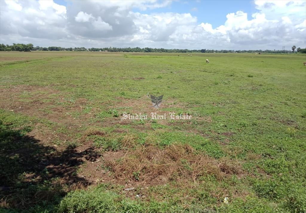 10 Bigha land for sale in Dhulagarh