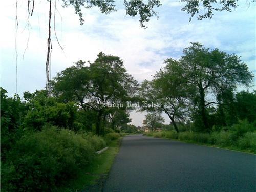 300 Katha/15 Bigha land for sale in Kalyani Expressway