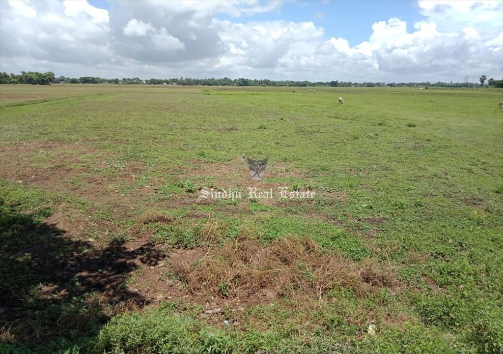 20 bigha land available for sale in Kharagpur