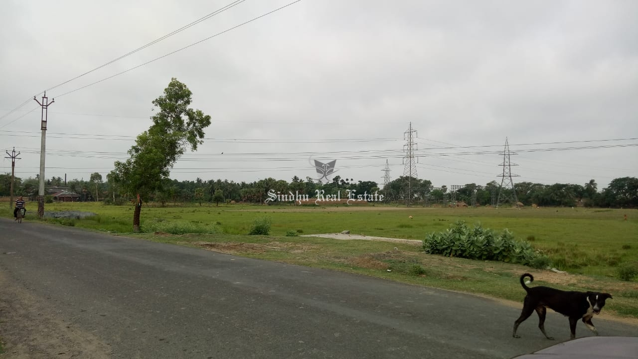 60 Katha land available for sale in Dankuni