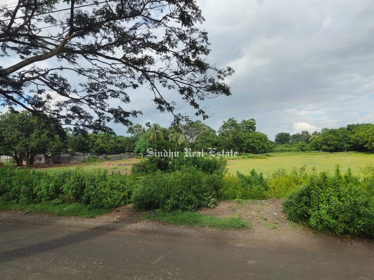 15 Bigha land available in Rajarhat for sale