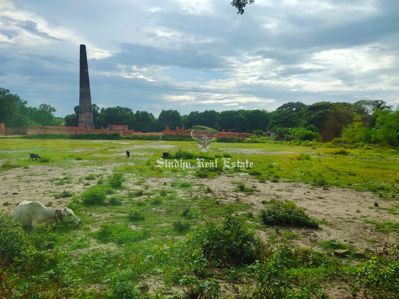 Land is available in the prime locality of rajarhat