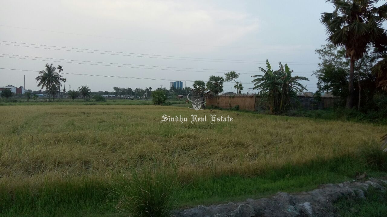 66 Katha land is available for sale in Jangalpur