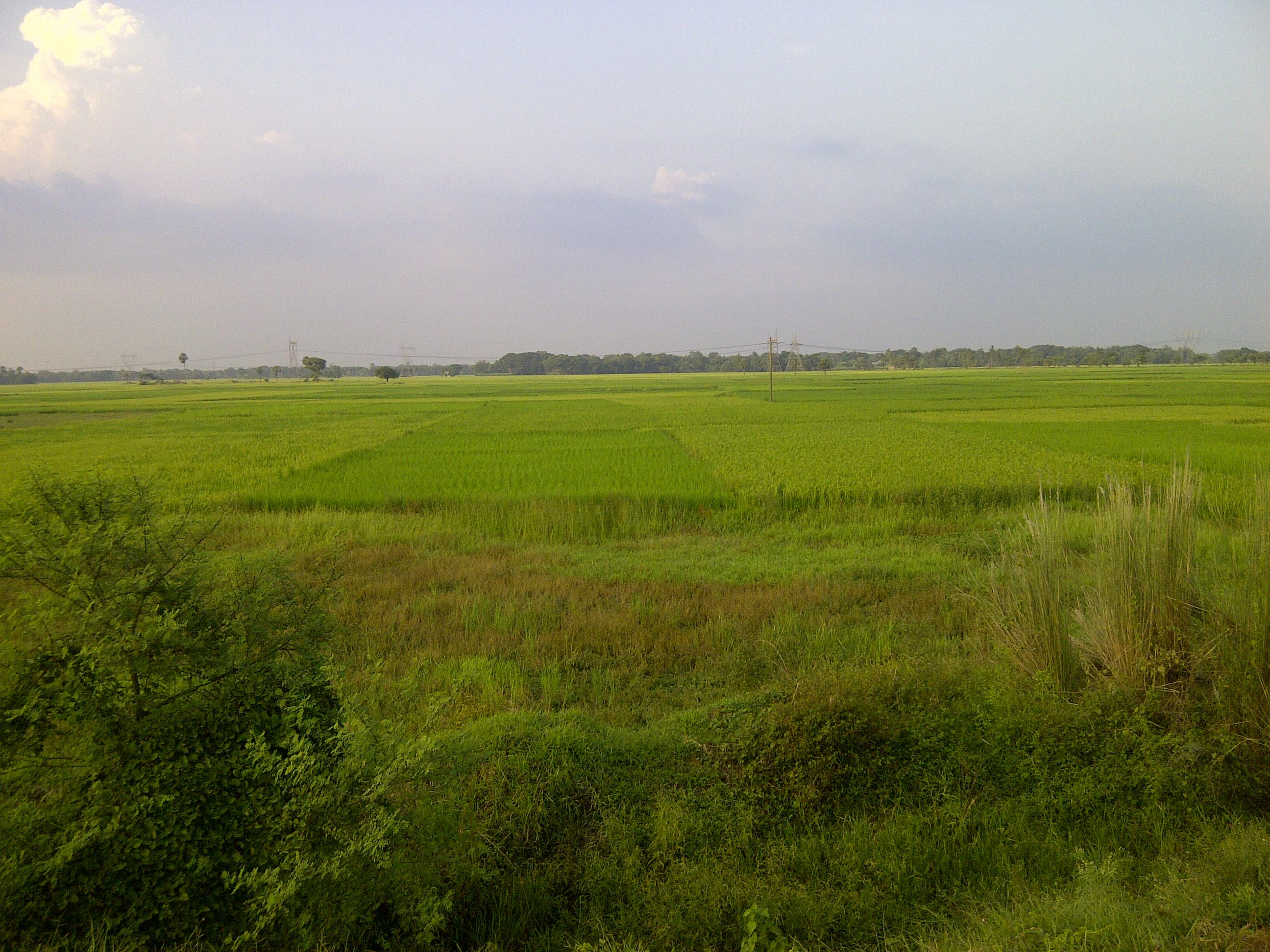 commercial land is available for sale at sonarpur