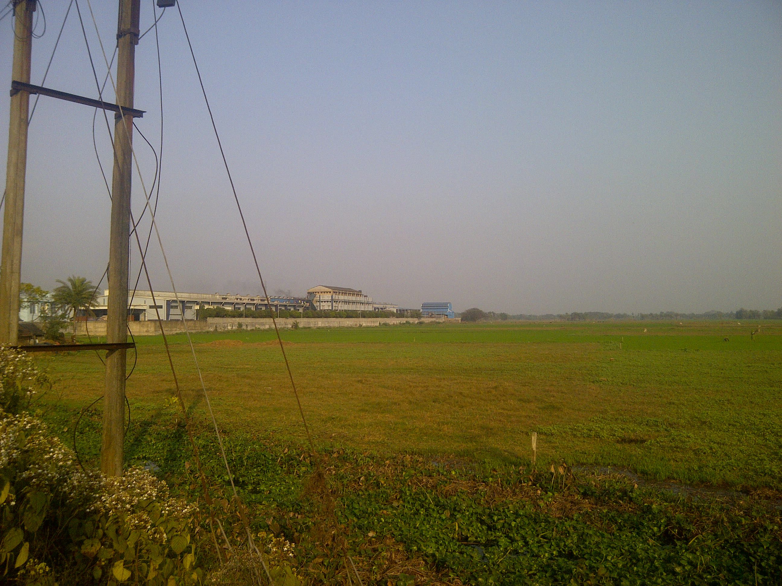 Commercial Land For Sale at Lakshmikantapur